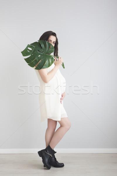 Brunette pregnant woman holding monstera leaf Stock photo © dashapetrenko