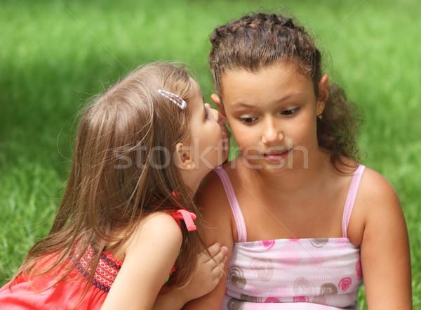 Kettő boldog kislányok szórakozás nyár nap Stock fotó © dashapetrenko