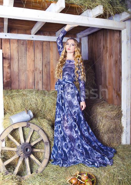 Gyönyörű szőke divatos nő széna csőr Stock fotó © dashapetrenko