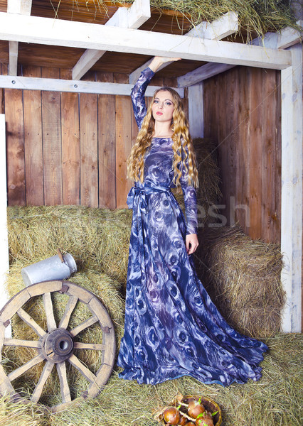 Belo loiro elegante mulher feno celeiro Foto stock © dashapetrenko