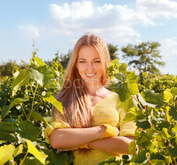 Woman winegrower Stock photo © dashapetrenko