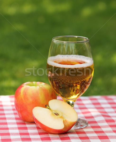 Jabłko jabłecznik jabłka lata piknik żywności Zdjęcia stock © dashapetrenko