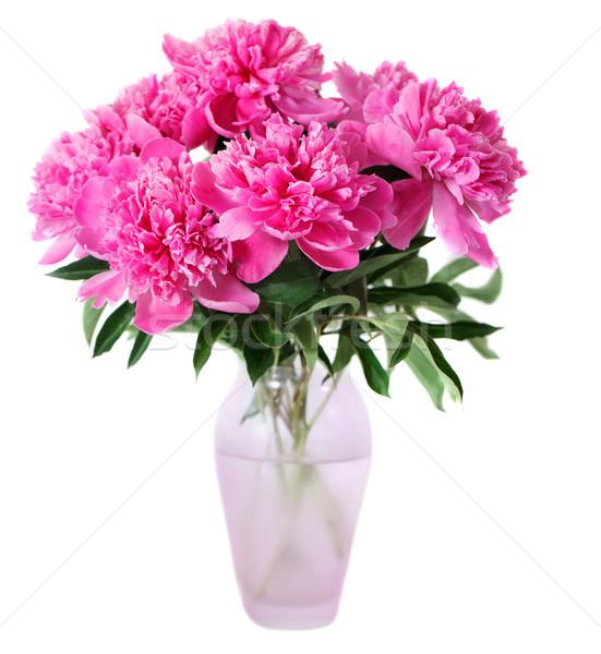 Rosa flores jarrón aislado blanco Pascua Foto stock © dashapetrenko