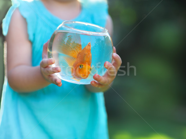 Little baby girl holding a fishbowl with a goldfish on a nature  Stock photo © dashapetrenko