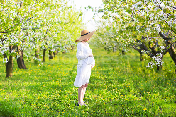 Pregnant woman wearing big hat and white dress in blooming garde Stock photo © dashapetrenko