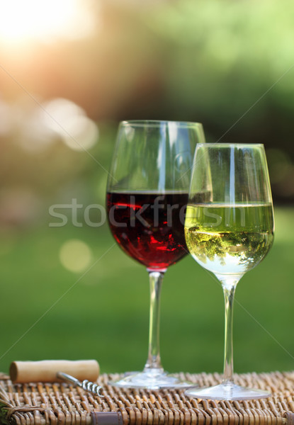 Two glasses of the white and red  wine  Stock photo © dashapetrenko