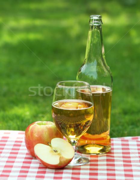 Elma elma şarabı elma yaz piknik gıda Stok fotoğraf © dashapetrenko