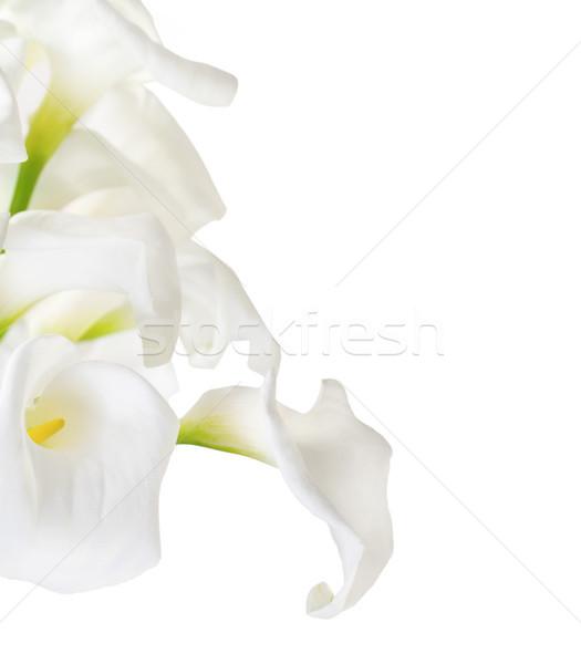 Сток-фото: высокий · ключевые · изолированный · белый