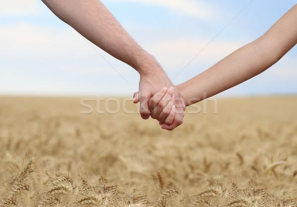 Young couple holding hands in the field Stock photo © dashapetrenko