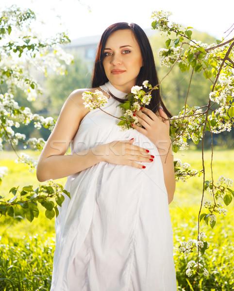 Frumos femeie gravida rochie de culoare alba inflorire primăvară portret Imagine de stoc © dashapetrenko