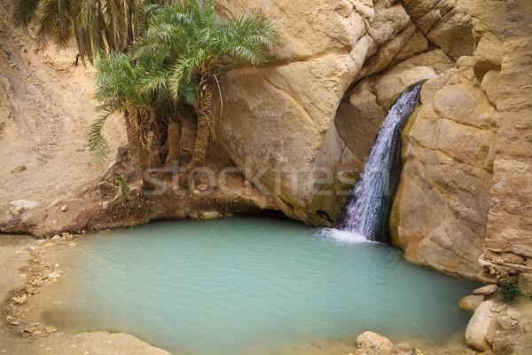 Cascade montagne oasis Tunisie Afrique vue Photo stock © dashapetrenko