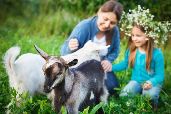 Feliz madre hija bebé cabras Foto stock © dashapetrenko