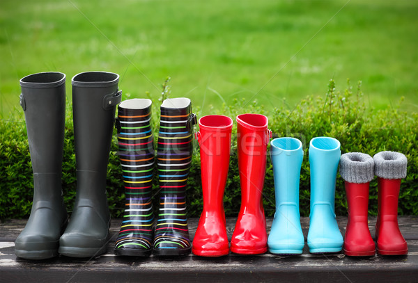 Five pairs of a colorful rain boots Stock photo © dashapetrenko
