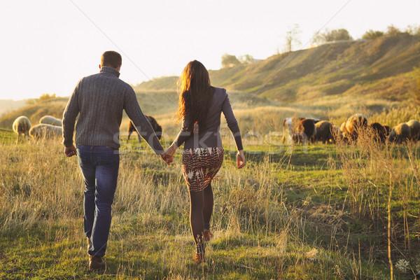 Para strony romantyczny chodzić jesienny Zdjęcia stock © dashapetrenko