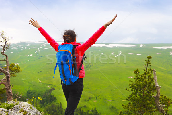 Vrouw handen omhoog top berg wandelaar rugzak Stockfoto © dashapetrenko