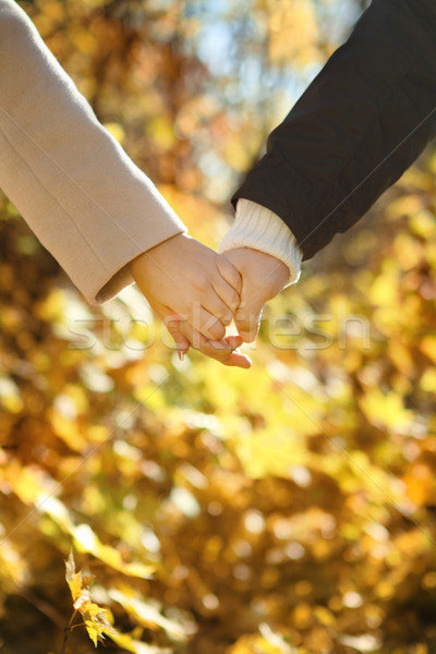 Young couple holding hands in the autumn forest Stock photo © dashapetrenko