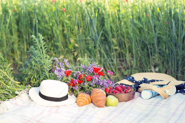 Basket, croissans, plaid and juice in a poppy field Stock photo © dashapetrenko