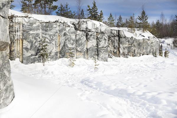 Zimą krajobraz śniegu kopia przestrzeń drzewo Zdjęcia stock © dashapetrenko