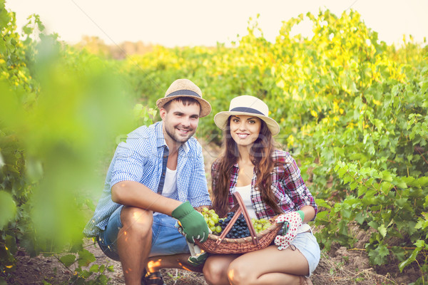 Young happy couple of wine growers  Stock photo © dashapetrenko