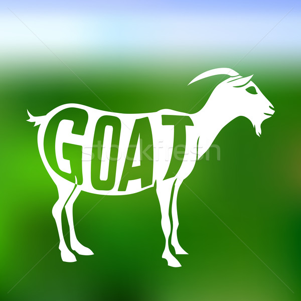 Concept silhouette of goat with text inside on blur background. Stock photo © Dashikka