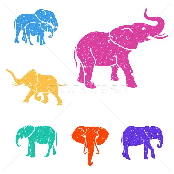 Elefántok szín szett grunge textúra terv művészet Stock fotó © Dashikka