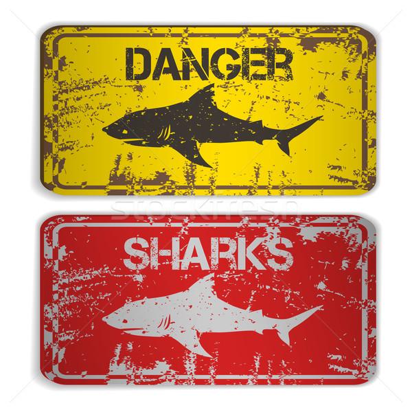 Iki plakalar köpekbalıkları doğa sanat siyah Stok fotoğraf © Dashikka