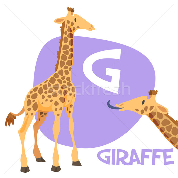 Funny cartoon animals vector alphabet letter set for kids . G is giraffe Stock photo © Dashikka