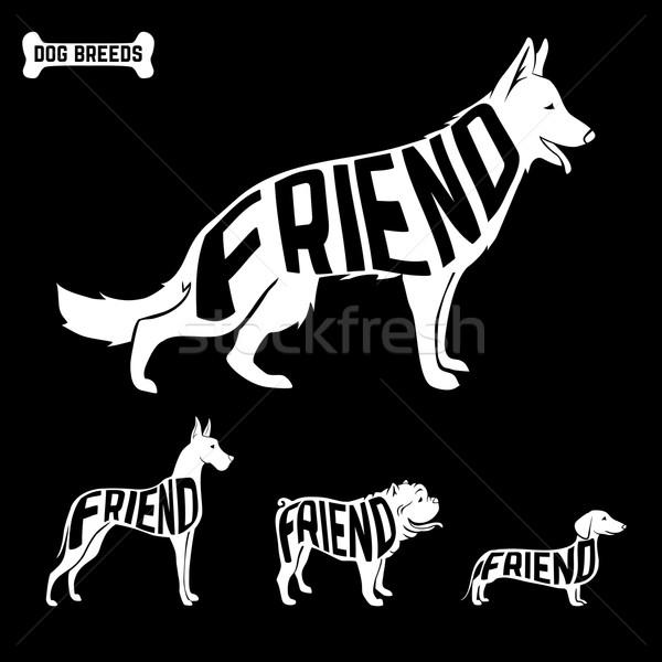 Köpekler siluetleri metin içinde yalıtılmış dostluk Stok fotoğraf © Dashikka