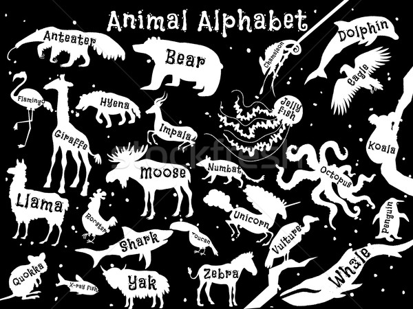 Animal alphabet poster for children. Animals silhouettes with names and letters inside. Poster conce Stock photo © Dashikka