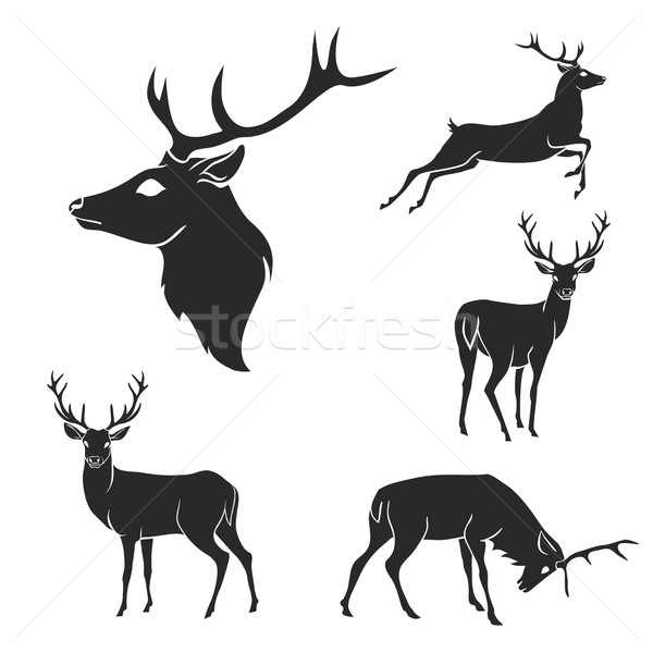 Set of black forest deer silhouettes. Suitable for logo, emblem, pattern, typography etc. Isolated b Stock photo © Dashikka