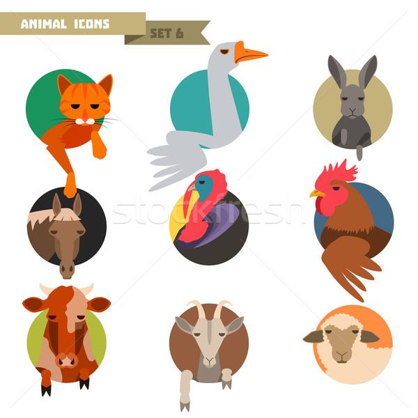 Farm animals avatars Stock photo © Dashikka