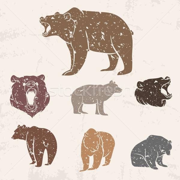 Ayarlamak farklı ayılar grunge dizayn orman Stok fotoğraf © Dashikka
