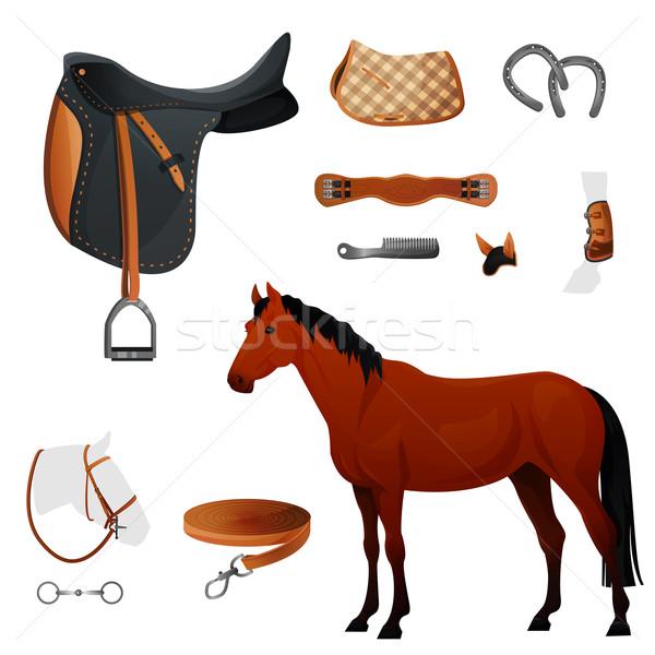 Stockfoto: Ingesteld · uitrusting · paard · opleiding · leder
