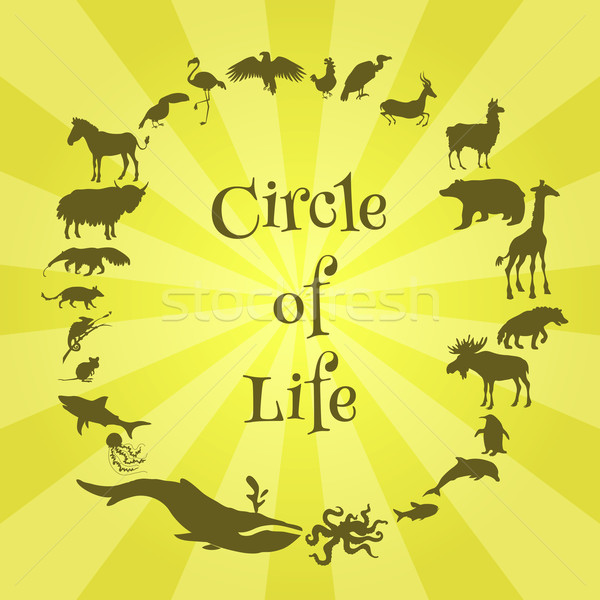 Stock photo: Concept poster animals silhouettes around with text inside. Circle of life.