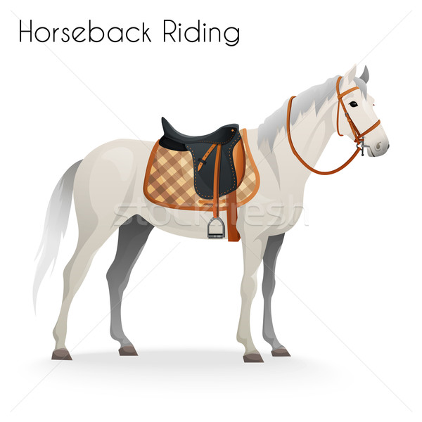 Horse with equestrian equipment for horseback riding Stock photo © Dashikka