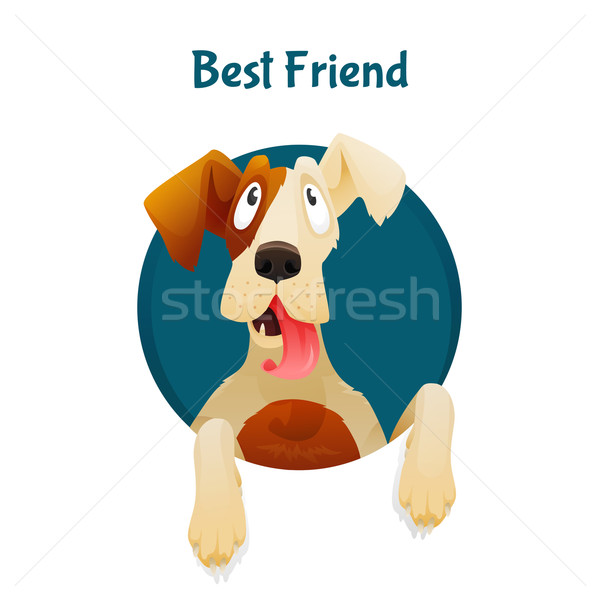 Funny and cute dog looking up from the hole with text. Concept of best friend, adoption, veterenary  Stock photo © Dashikka