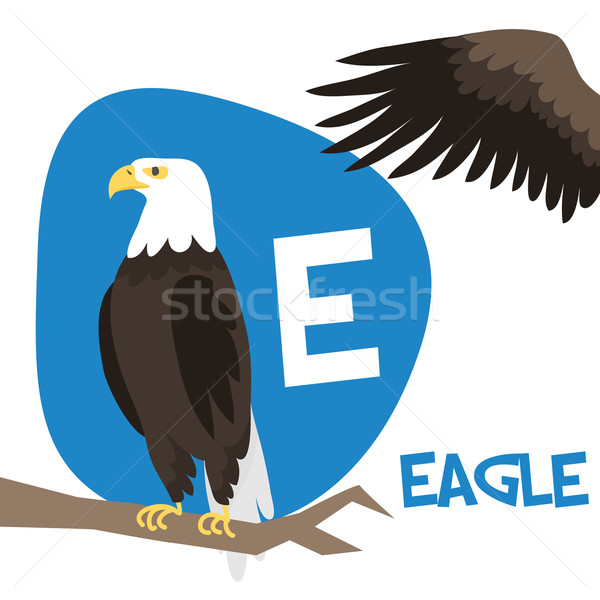 Funny cartoon animals vector alphabet letter set for kids. E is Eagle.   Stock photo © Dashikka