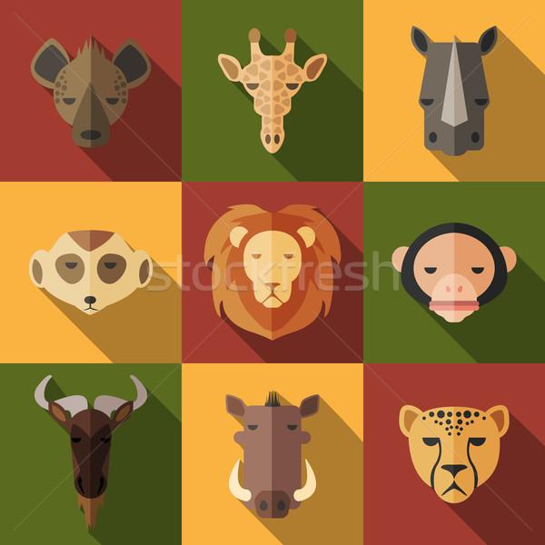 állat portré szett terv afrikai arc Stock fotó © Dashikka