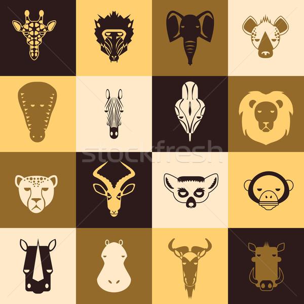 Afrika hayvanlar simgeler yüz doğa arka plan Stok fotoğraf © Dashikka