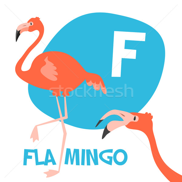 Funny cartoon animals vector alphabet letter set for kids. F is Flamingo   Stock photo © Dashikka