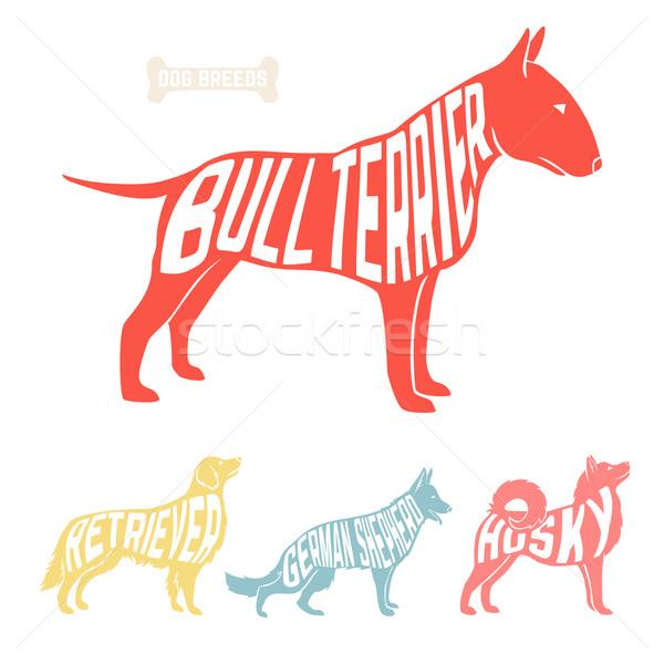 Isolated dog breed silhouettes set with names of breeds inside on white baclground.  Stock photo © Dashikka