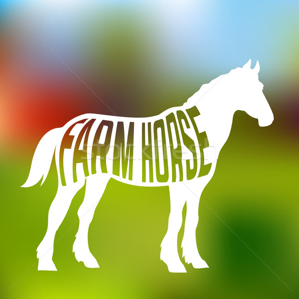 Concept of horse silhouette with text inside on farm background Stock photo © Dashikka