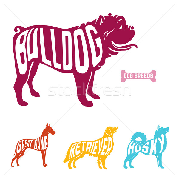 Purebred dogs with name of breed inside silhouettes.  Colorful set Stock photo © Dashikka