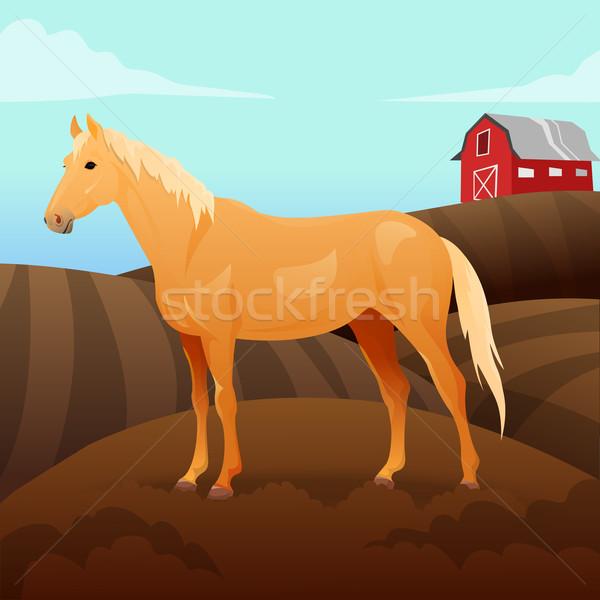 лошади фермы небе счастливым дети глазах Сток-фото © Dashikka