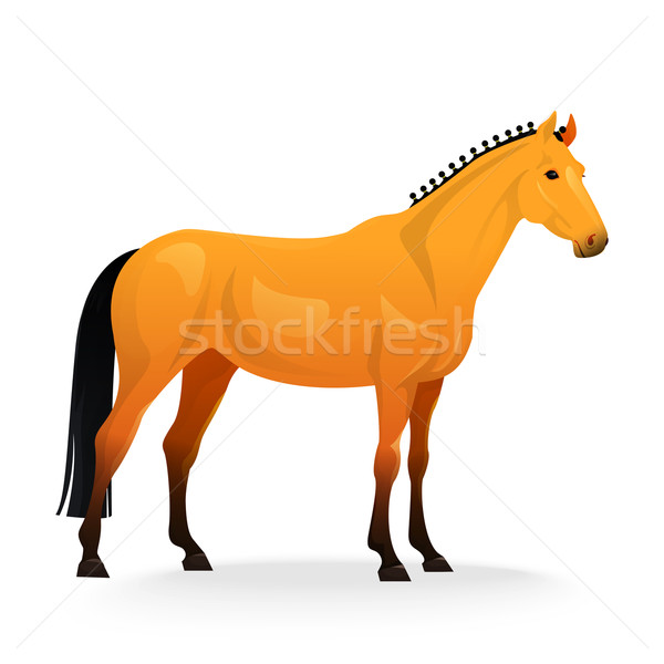 Realistic horse with red coat. Stock photo © Dashikka