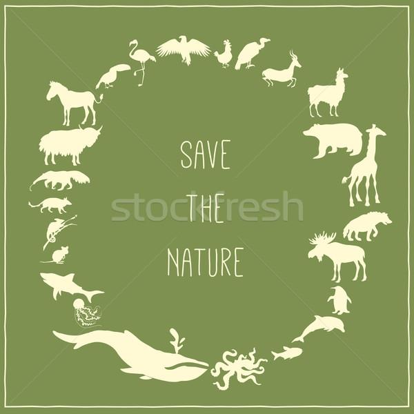 Yeşil poster hayvanlar siluetleri etrafında metin Stok fotoğraf © Dashikka
