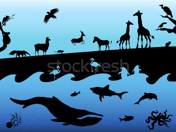 Hayvan siluetleri siyah mavi ağaç orman Stok fotoğraf © Dashikka
