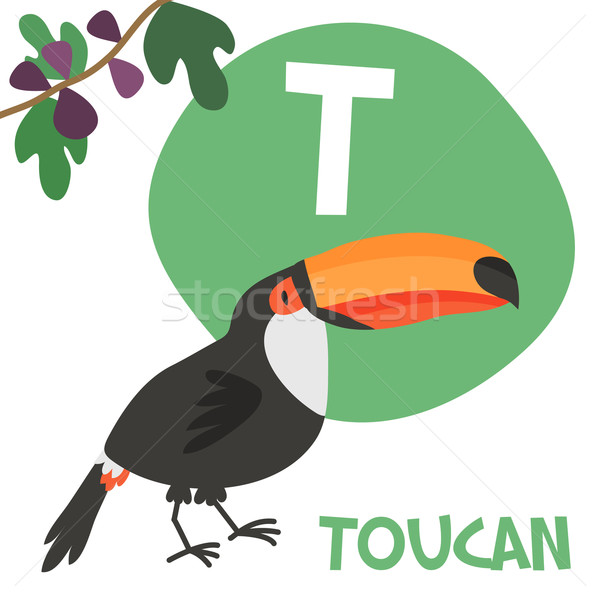 Funny cartoon animals vector alphabet letter set for kids. T is Toucan Stock photo © Dashikka