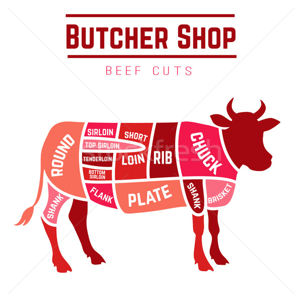 Sığır eti diyagram kasap alışveriş gıda dizayn Stok fotoğraf © Dashikka