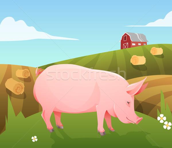 Disznó farm rózsaszín terv művészet hús Stock fotó © Dashikka